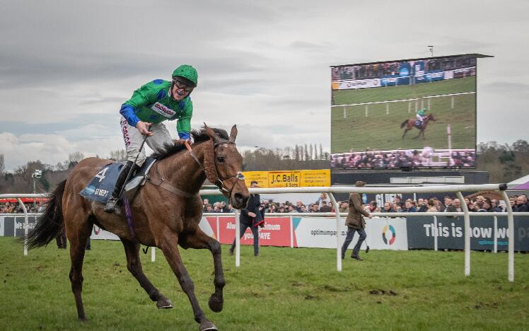 Midlands Grand National Stories