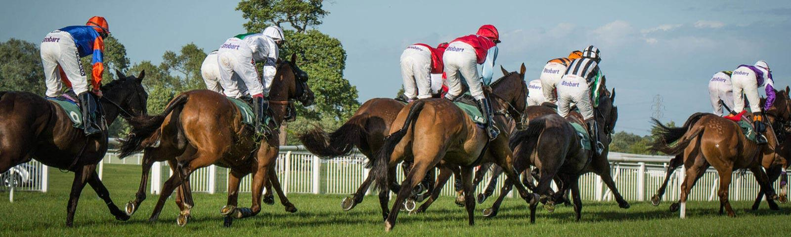 Group of jockeys racing at Uttoxeter Racecourse.